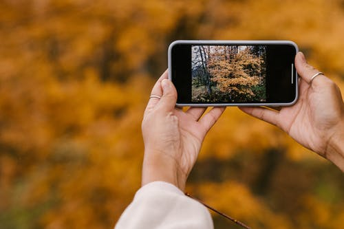 Crop faceless woman taking photo of scenic autumn park