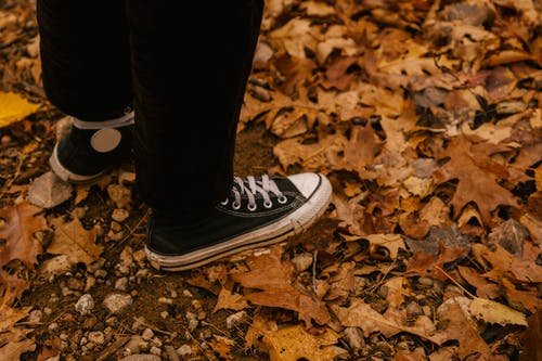Person in sneakers standing on dry foliage