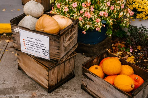 From above of wooden containers full of harvested pumpkins placed near blooming flowers growing in flowerbeds at local market