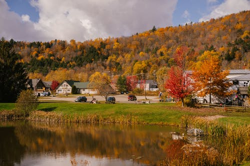 Rural houses in autumn day on shore of pond