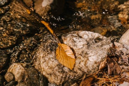 Δωρεάν στοκ φωτογραφιών με aqua, rock, άγρια φύση