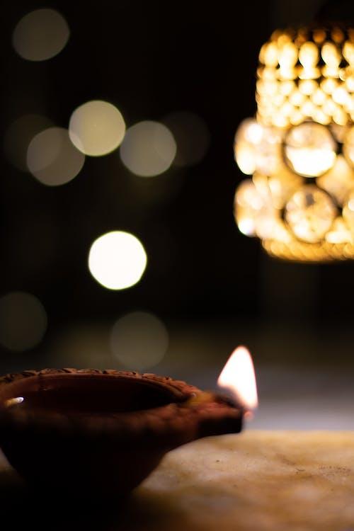 Photos gratuites de agave, diwali, feux arrière