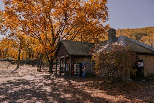 Altes Haus Auf Dem Land Im Herbst