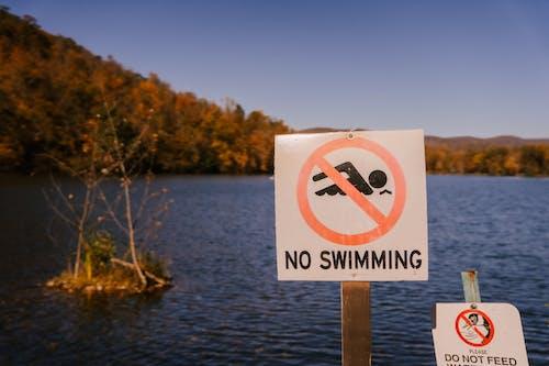Forbidden sign near sea in countryside
