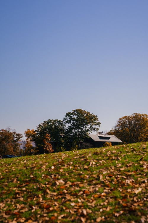 From below roof of aged house located near green trees on grassy meadow with dry leaves against blue sky in countryside