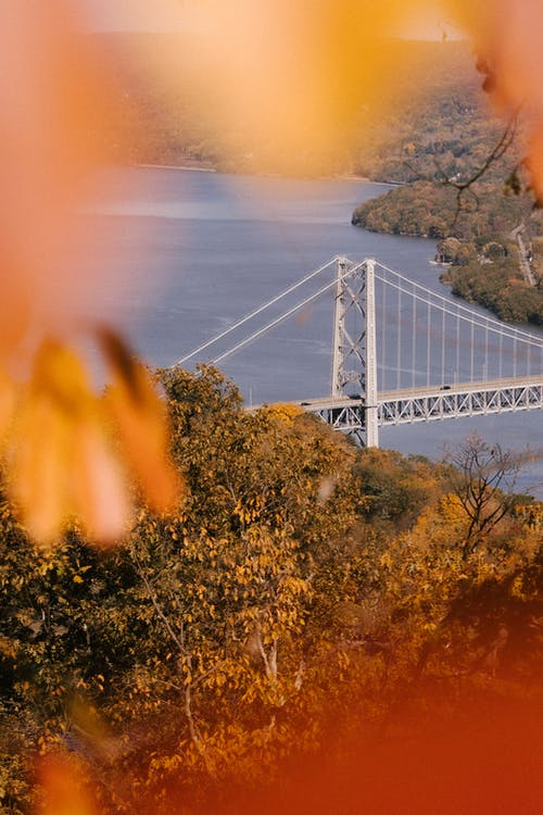 Through golden leaves of Bear Mountain Bridge crossing calm river hilly terrain covered with autumn trees in sunlight