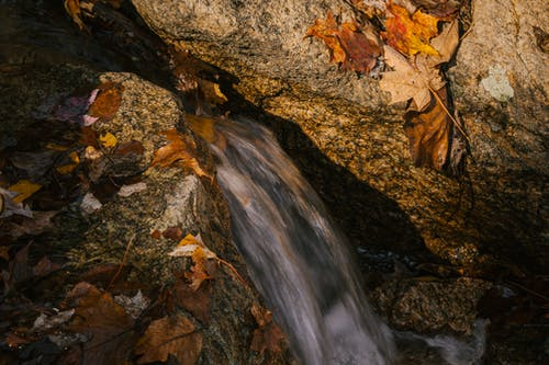 From above of fast waterfall flowing between rough rocky boulders with fallen autumn leaves on sunny day