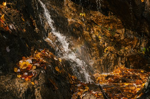 Picturesque view of cascade with fast water flow on rough mount covered with faded leaves in fall