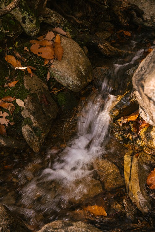 From above of waterfall with fast and foamy flow on mount with dry leaves in autumn
