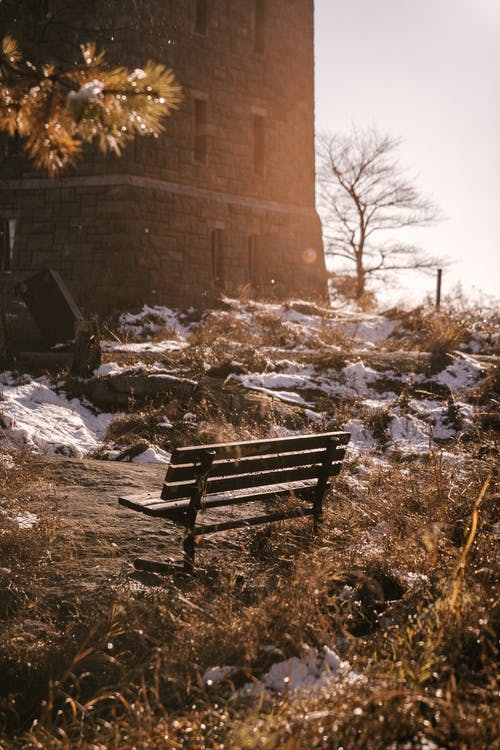Wooden bench against brick building in park