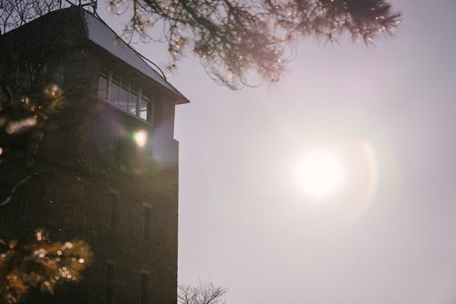 Low angle view from tree branches with tall tower and bright sun shining on cloudless sky