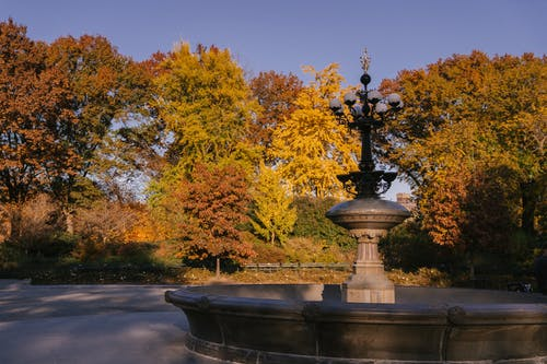 Cherry Hill Fountain placed in autumn park