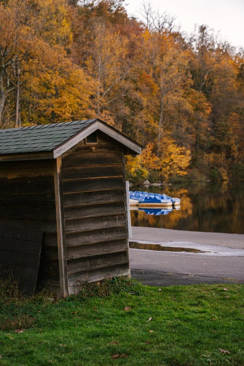 Wooden house located in park with calm lake