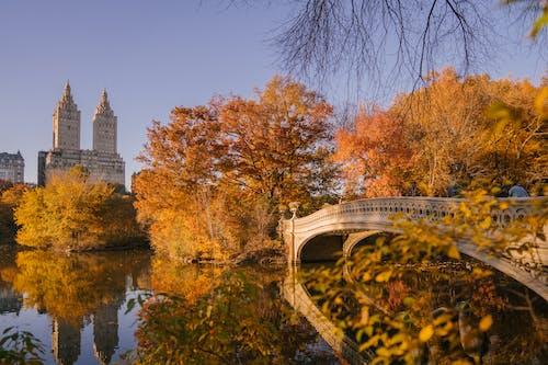 Bow Bridge crossing calm lake in autumn park