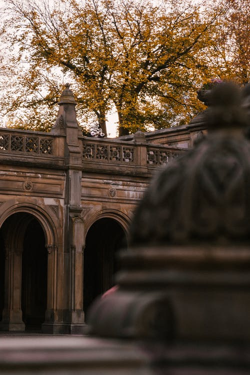 Bethesda Terrace placed in autumn park