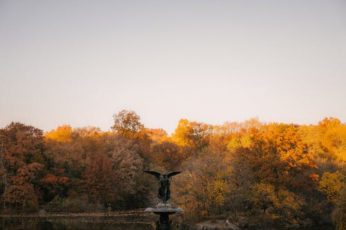 Fragment of Bethesda Fountain statue of Angel of the Waters against colorful trees placed in autumn Central Park in New York City in sunny day