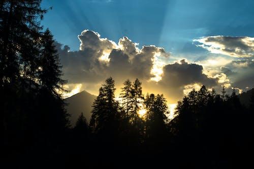 傍晚天空, 傍晚的太陽, 反对光明, 发光的 的 免费素材图片