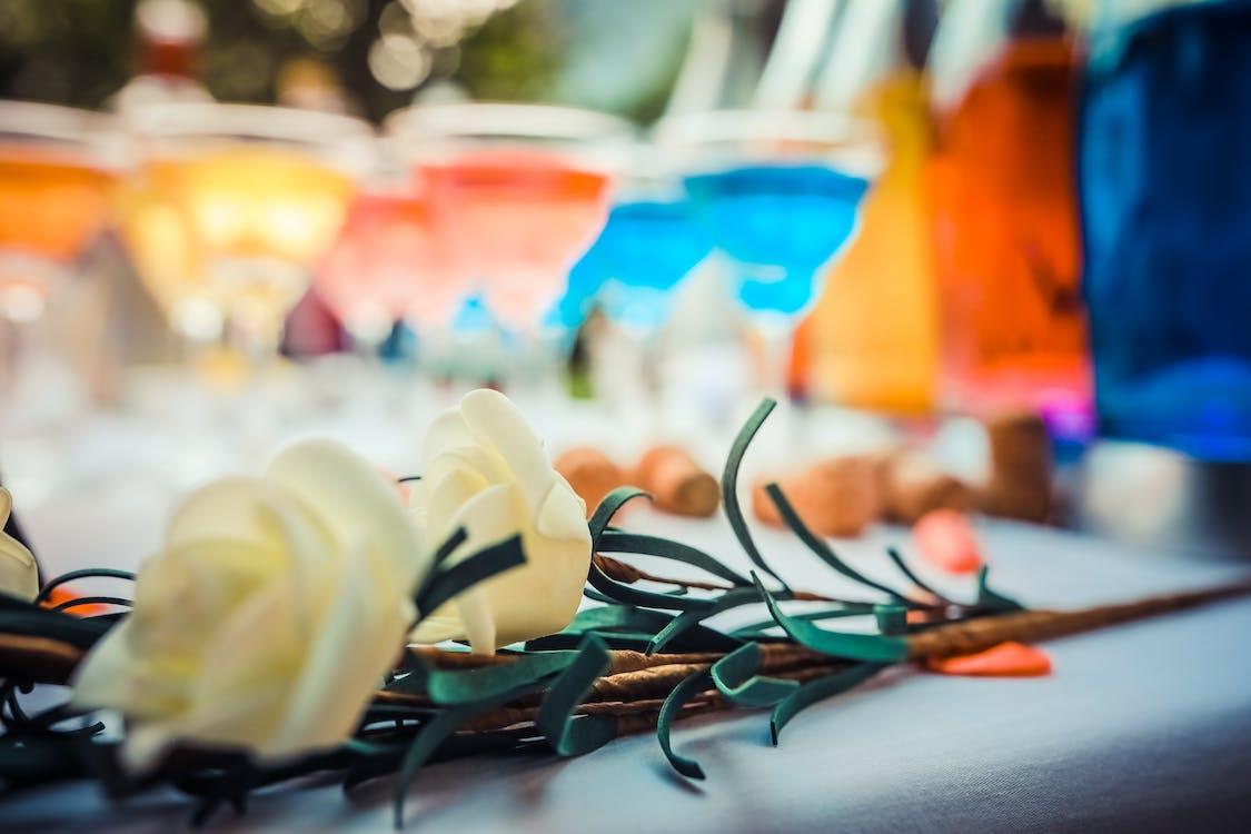 Бесплатное стоковое фото с вечеринка