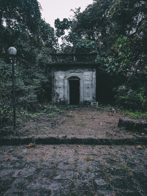 Small shabby stone outbuilding in park