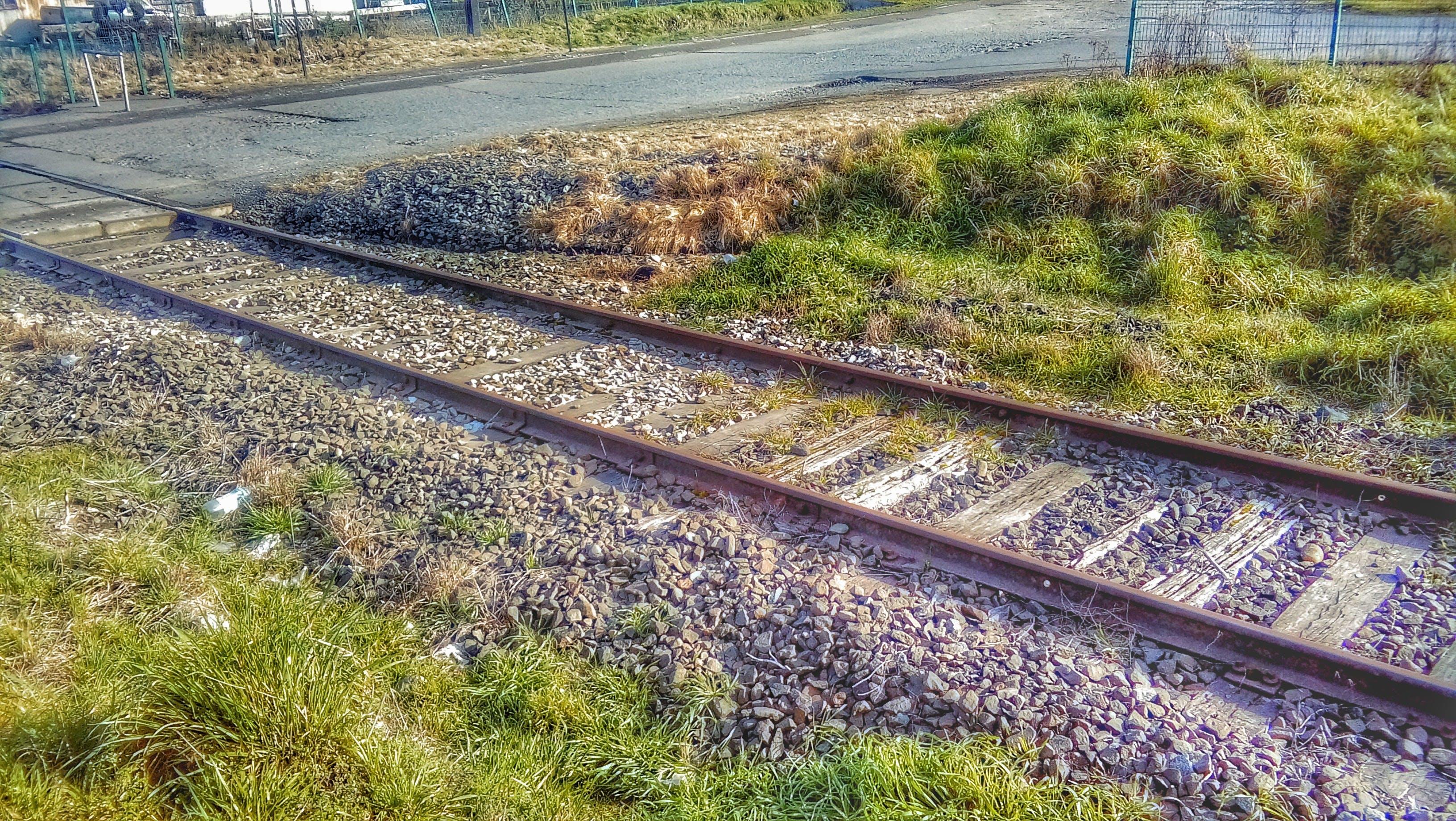 Free stock photo of grass, HD wallpaper, rails
