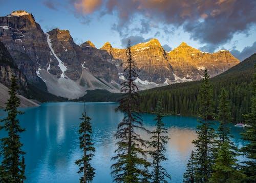 Immagine gratuita di acqua, alba, autunno