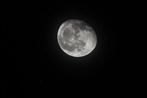 คลังภาพถ่ายฟรี ของ กลางคืน, จันทรคติ, จันทรา, วิทยาศาสตร์