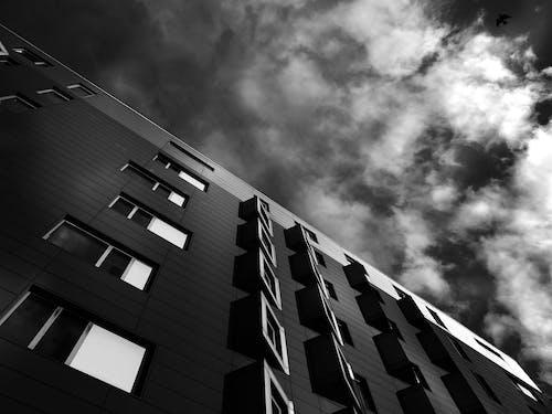 Základová fotografie zdarma na téma architektura, budova, černobílá, černobílý