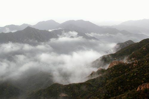 Gratis arkivbilde med fjell, landskap, skog, skyer