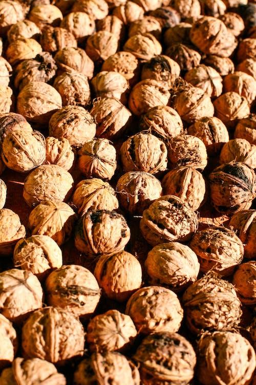 Close Up Shot of Walnuts