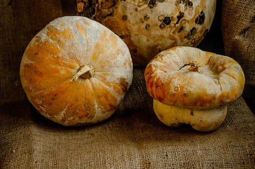 Withered pumpkins on textile in room
