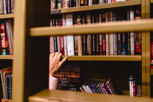 Imagine de stoc gratuită din cărți, magazin de cărți, mână, rafturi