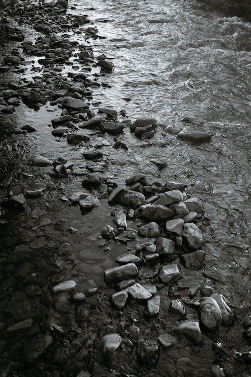 Безкоштовне стокове фото на тему «bw, берег, берег річки»