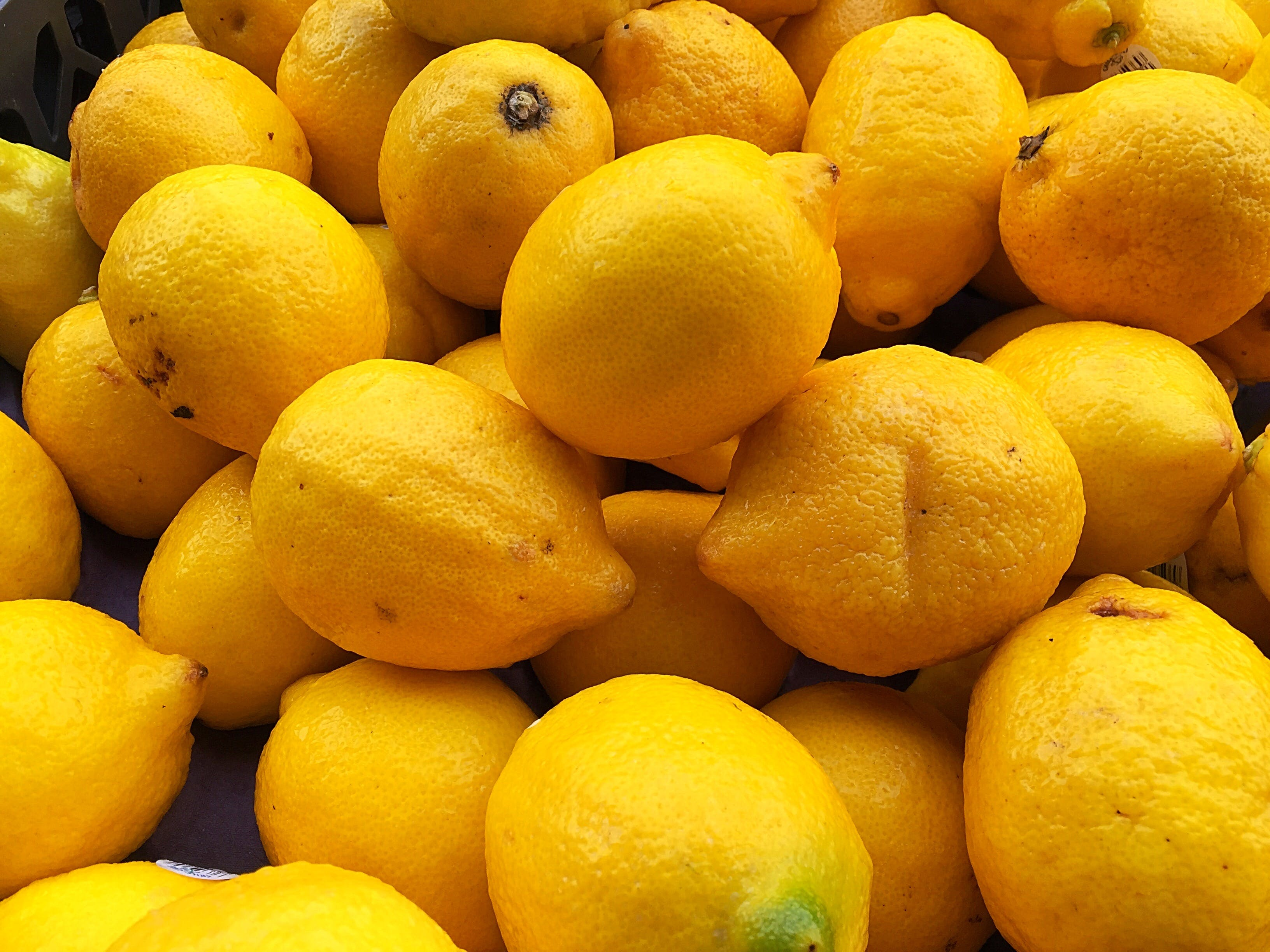 Free stock photo of citrus fruit, lemons, yellow