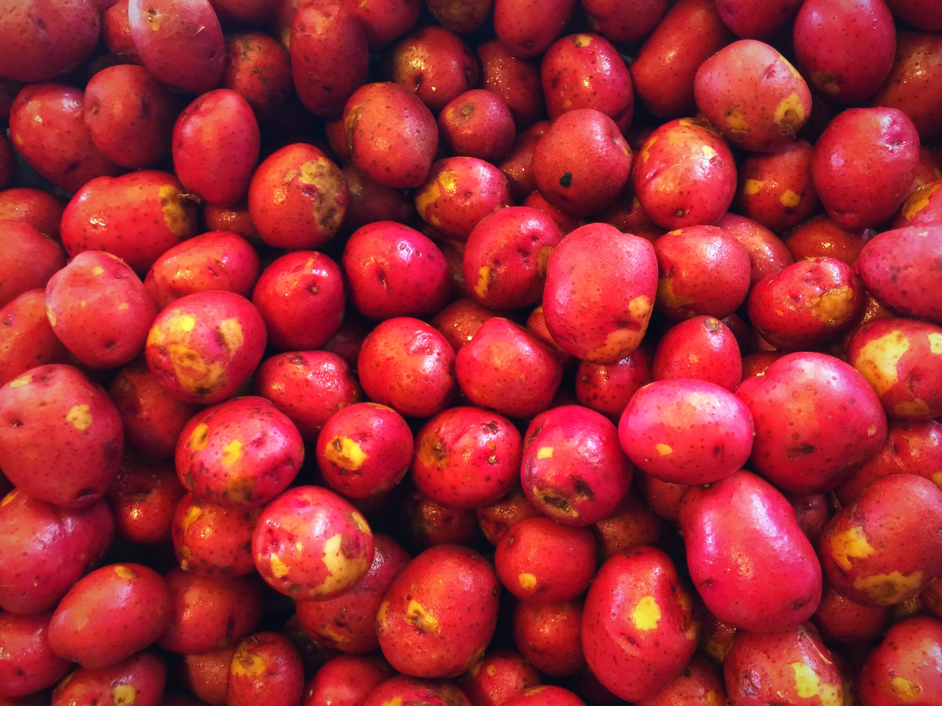 Kostenloses Stock Foto zu frisches gemüse, kartoffeln, rot