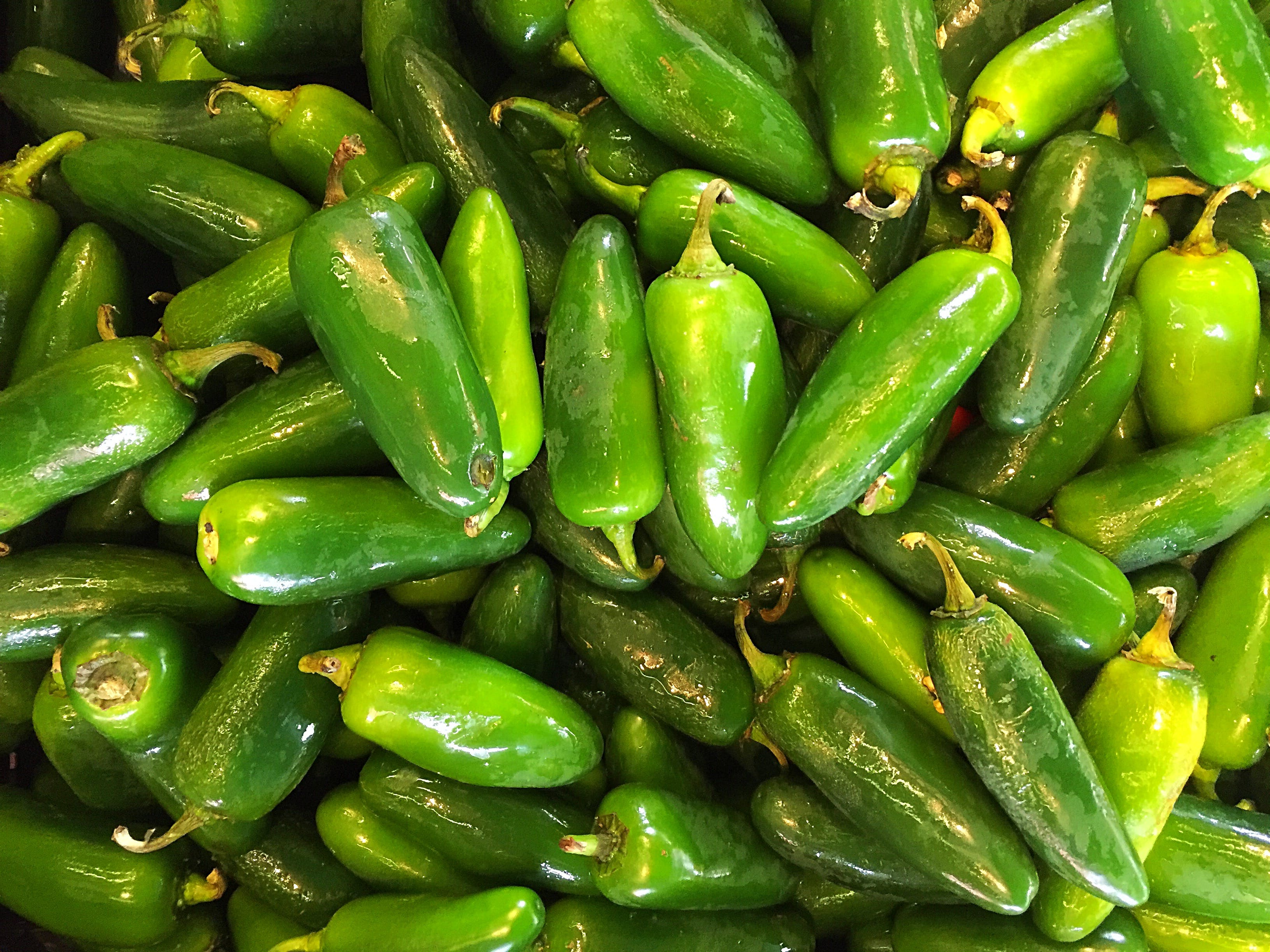 Free stock photo of green, peppers, vegetable