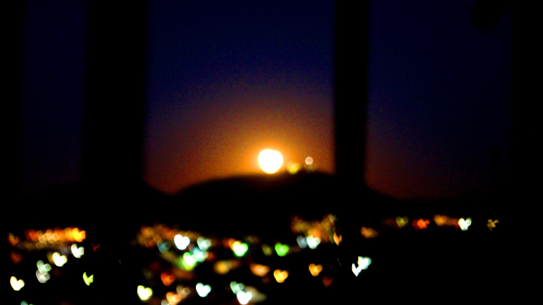Free stock photo of corazones, luces, noche
