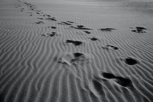 Black and white of rows of footprints on empty wavy sandy shore in daytime