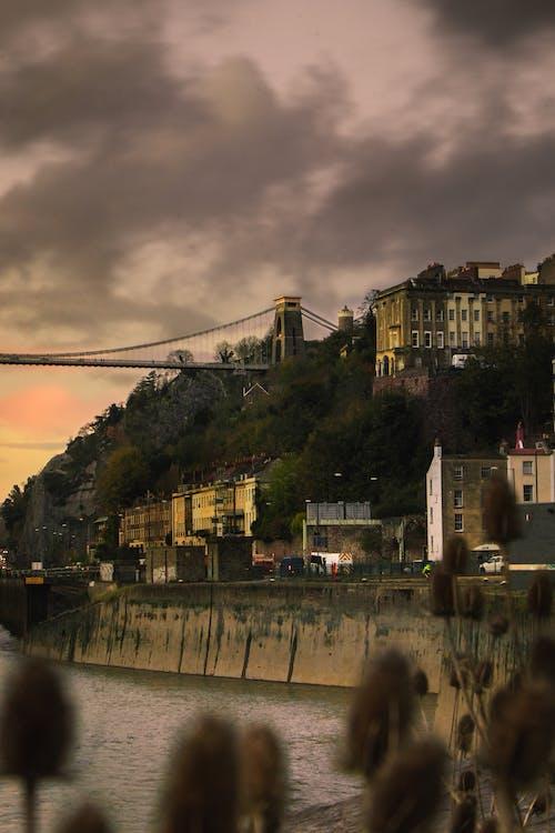 Kostnadsfri bild av byggnader, flod, hängbro