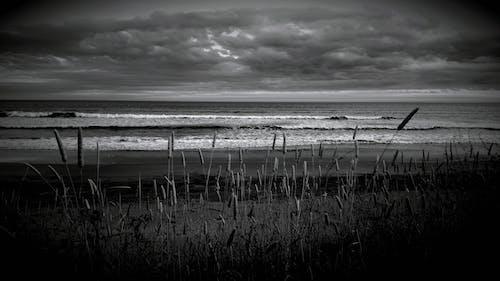 Foto profissional grátis de costa, escuro, litoral, mar