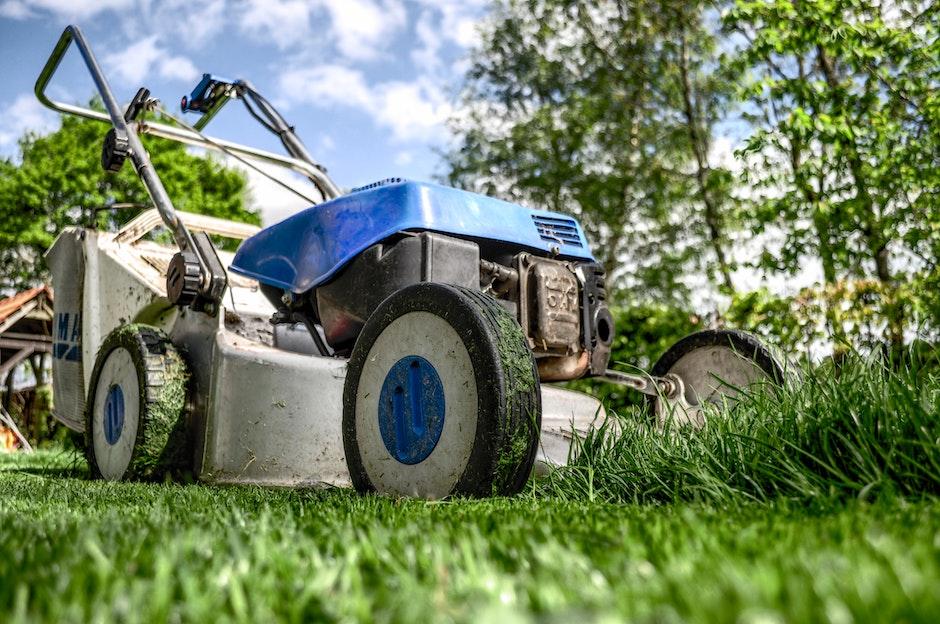 garden, gardening, grass