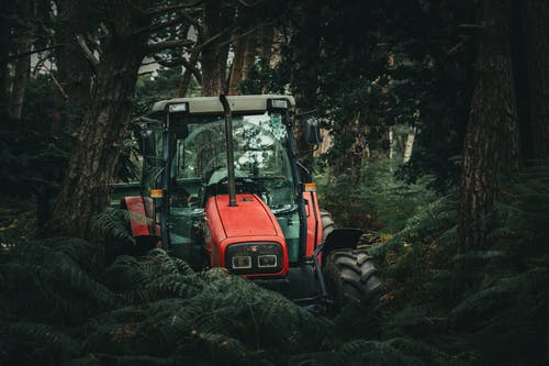 Red Tractor Beside Trees