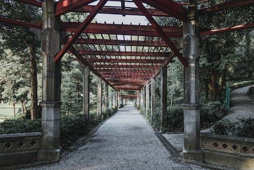 Gratis lagerfoto af arkitektur, dagslys, have, kolonner