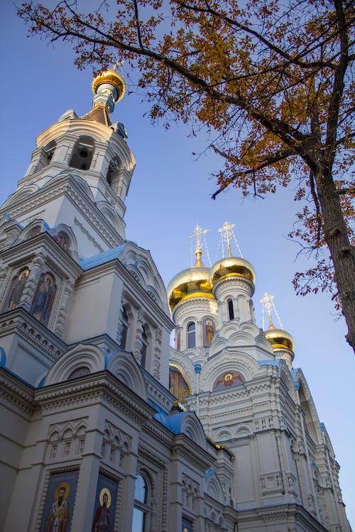 Immagine gratuita di architettura, campanile, cattedrale, chiesa