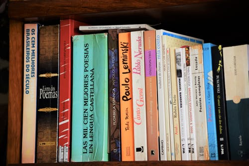 Free stock photo of book, book shelf, books