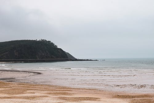 Magnificent scenery of rocky hill covered with trees located near wavy ocean with sandy beach during low tide against overcast sky