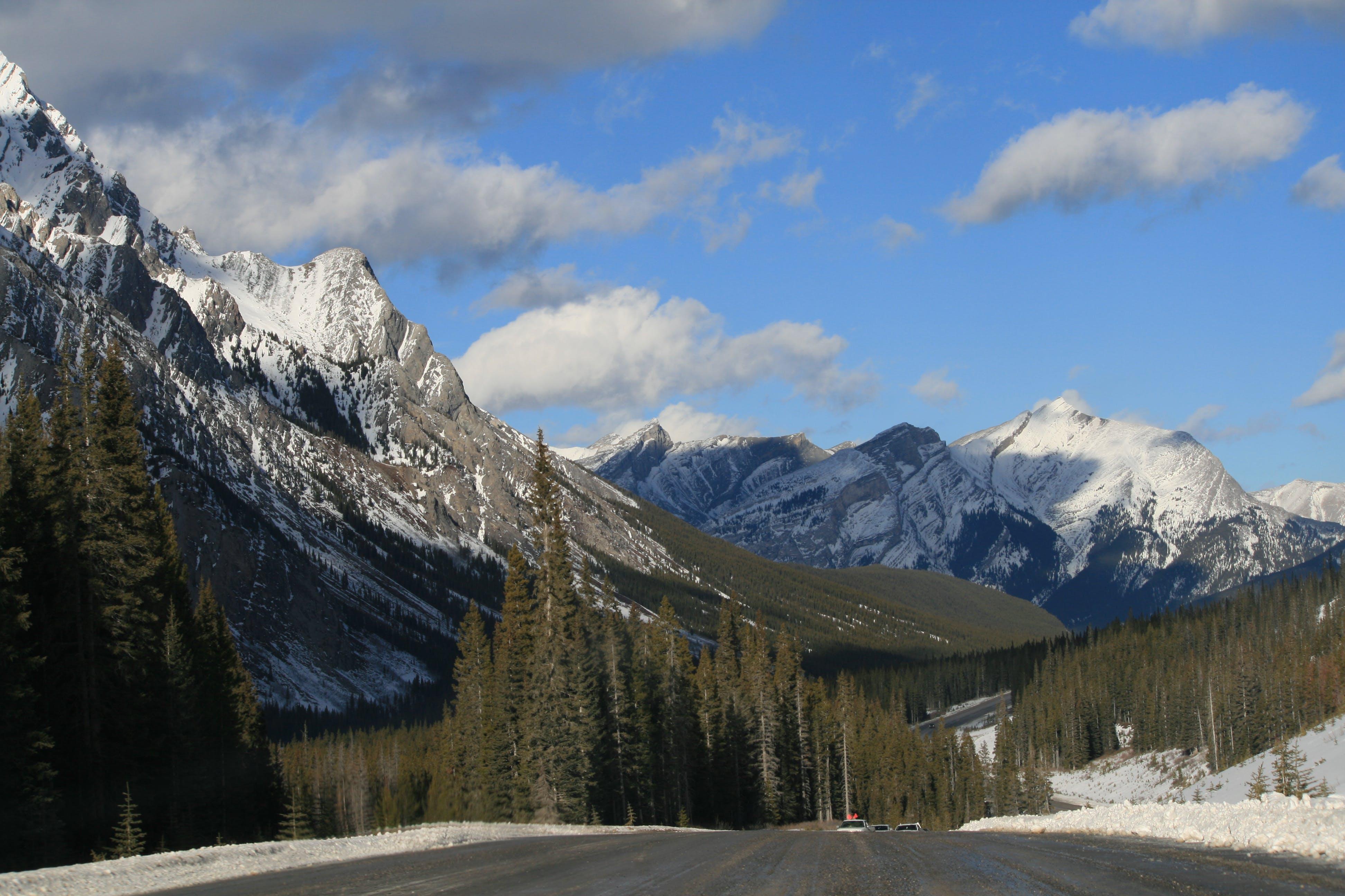 Ingyenes stockfotó alpesi, csúcs, fák, felhős témában