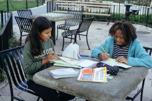 Écolières Multiethniques Ciblées à Faire Leurs Devoirs Dans Le Parc