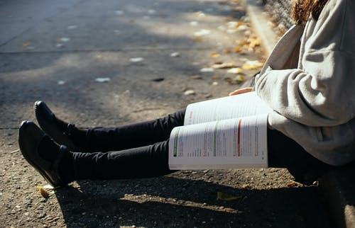 Side view crop female student in warm sweater sitting with opened textbook on knees on ground in sunny autumn park
