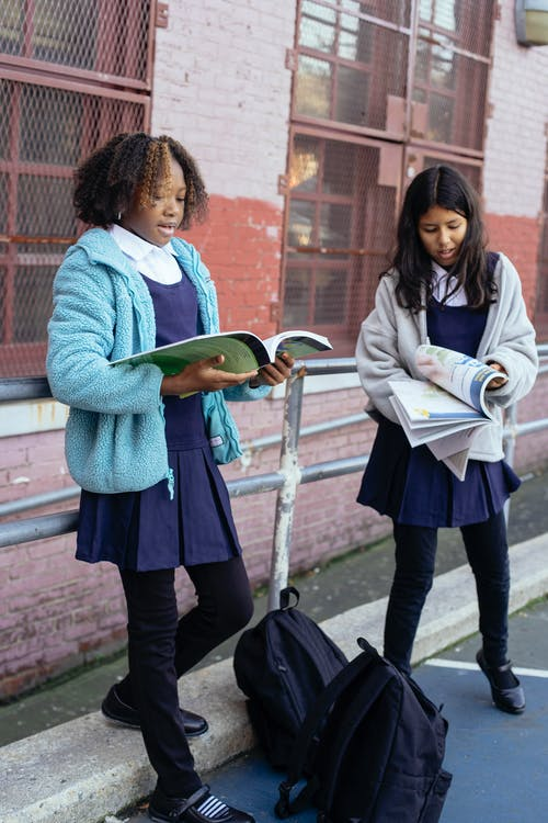 Multiracial attentive smart girls studying lessons and preparing for exams together near school