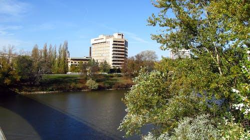Photos gratuites de arbres, bâtiment, d'en haut, panorama urbain